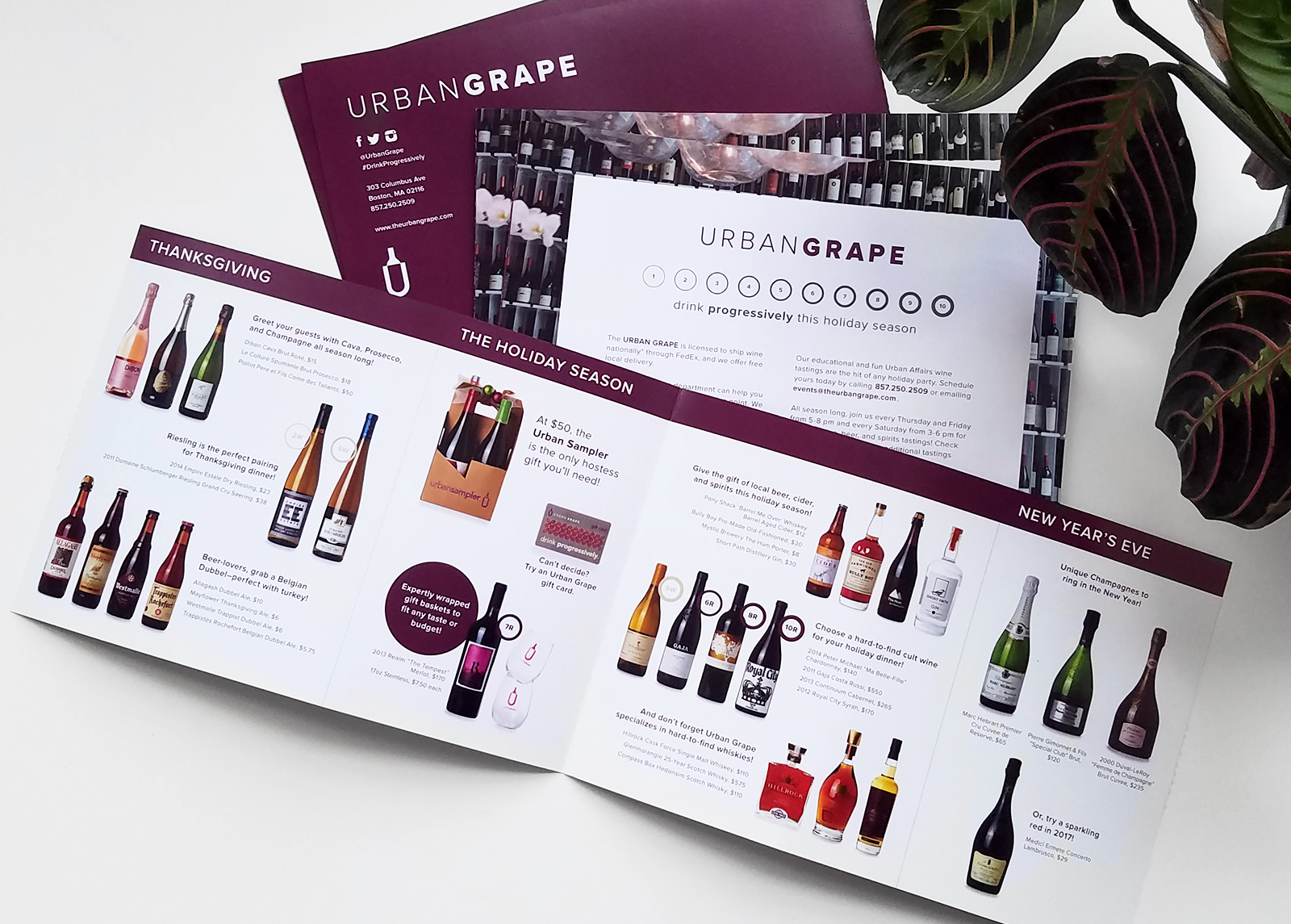 Urban Grape Branding by JSGD