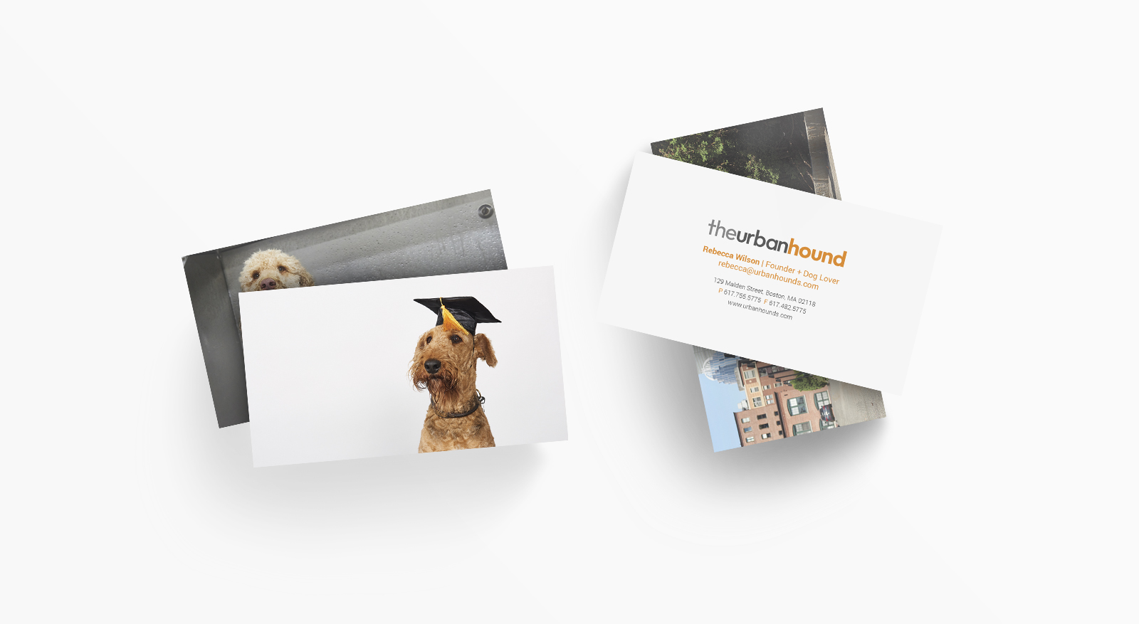 Urban Hound Business Card Design by JSGD