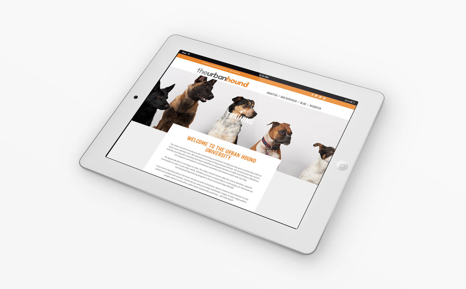 Urban Hound Web Design by JSGD