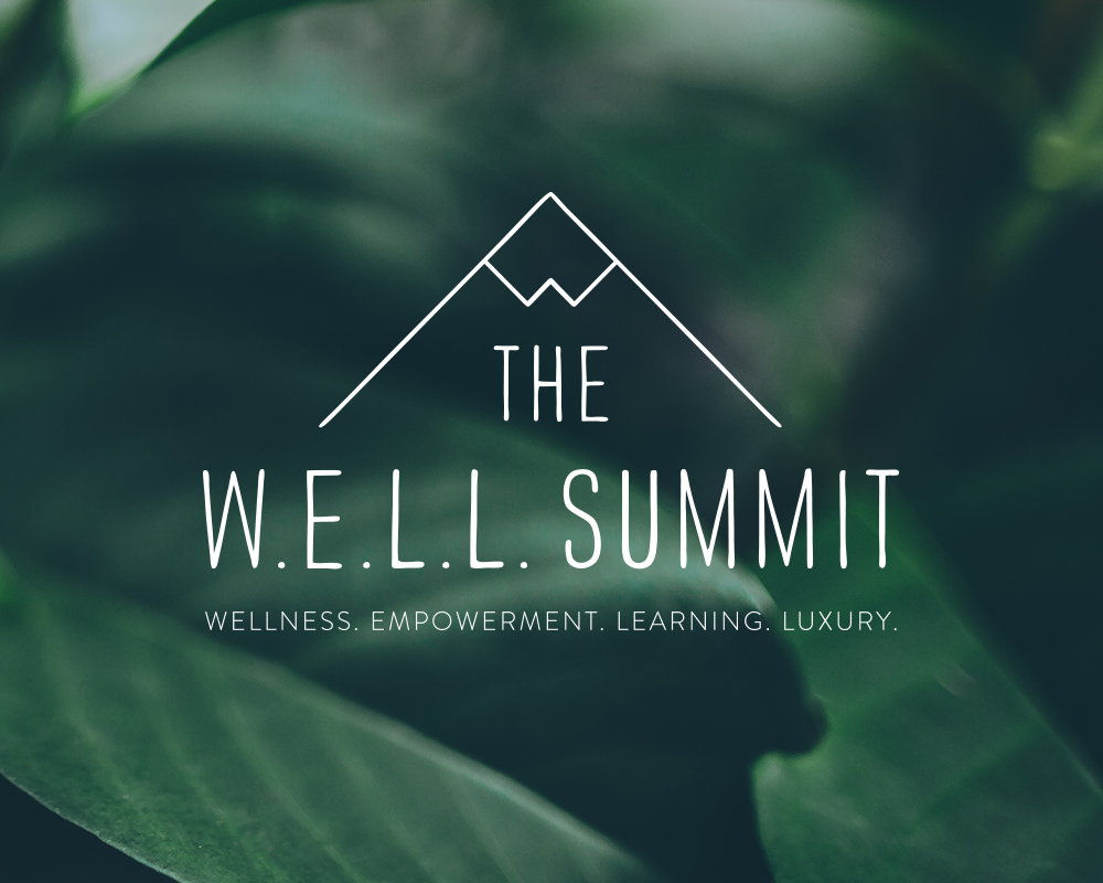 WELL Summit logo by JSGD